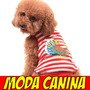 Kit Imprimible Moldes Y Patrones, Ropa Para Perro