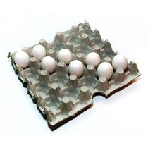 Maples De Huevos X30 (para 30 Huevos)