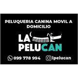 Peluqueria Canina Móvil