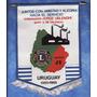 Banderin - Club De Leones - Distrito J3 Uruguay 1985 - 1986