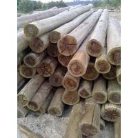 Poste De Eucaliptus 9 A 12 Cm X 3,50 Mts Madera Tratada