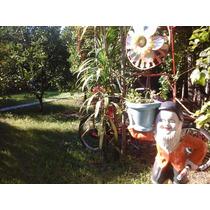 Alquileres Alquilar Casas Hotel Hostel Carmelo Vacaciones !!