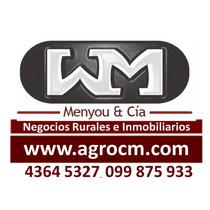 Trinidad, Venta, Alquileres, Casas, Aptos,galpones,terrenos,