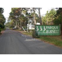 Hermoso Terreno Parque Burnett,pinares De Maldonado