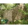 Campo Ganadero Forestal En Uruguay En Castillos