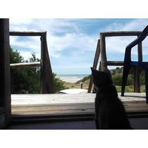 Barra Del Chuy Frente Mar O Bosque- . Wi Fi Y Dtv Gratis !
