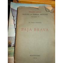 Paja Brava - El Viejo Pancho