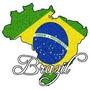 Mapa Brasil Detallado Gps Garmin Tarjeta De Memoria Incluída