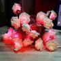Guia De Rosas Con Led (20) Varios Colores