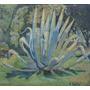 Gilberto Bellini - Cactus - Pintor Uruguay - Lámina 45x30 Cm