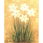 Laminas Con Flores Para Enmarcar.n´88.